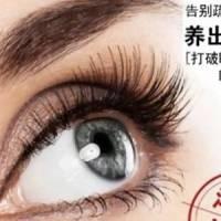 自然生长孕睫术 塑造芭比浓密翘睫