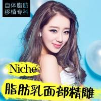 京韩Niche脂肪乳精雕活颜一次成型保成功