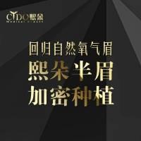 天津李会民院长艺术植眉 写日记返现1万元